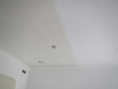 slaapkamer-plafond-sauzen